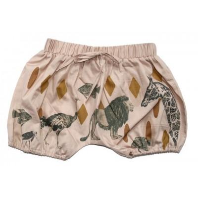 Short Safari
