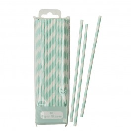 Mint Stripes Paper Straws