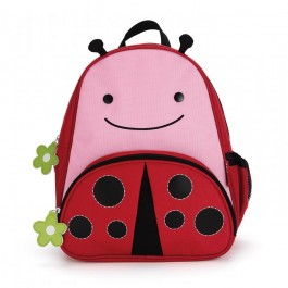 Zoo Pack Lady Bug