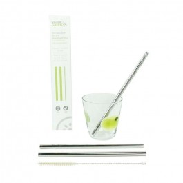 Set of Two Stainless Steel Straws & Brush